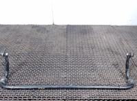 Стабилизатор подвески (поперечной устойчивости) Haval H2 6302174 #1