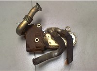 б/н Охладитель отработанных газов LDV (DAF) Maxus 6585199 #1