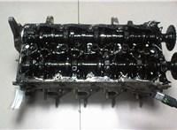 Головка блока (ГБЦ) Hyundai ix 35 2010-2015 6729530 #1