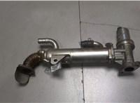 Охладитель отработанных газов KIA Carens 2006-2012 6745223 #1