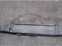 БН Радиатор интеркулера Chrysler 300C 2004-2011 6754003 #1