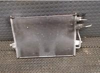 Радиатор кондиционера Citroen C5 2001-2004 6754447 #2