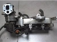 Охладитель отработанных газов Opel Antara 6755850 #1