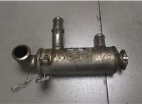 Охладитель отработанных газов Ford Focus 2 2008-2011 6761548 #1