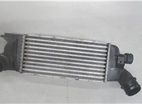 Радиатор интеркулера Peugeot 407 6761664 #1