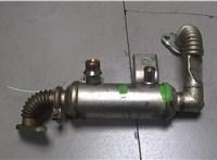 б/н Охладитель отработанных газов Ford Focus 2 2005-2008 6765522 #1