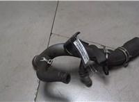 Трубка охлаждения Nissan Qashqai 2006-2013 6768799 #1