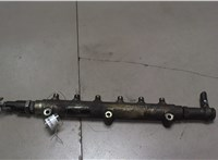 0445215010 Рампа (рейка) топливная Volvo S80 1998-2006 6769171 #1