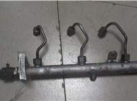 Рампа (рейка) топливная Mercedes ML W164 2005-2011 6775268 #1