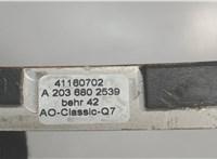 A2036802539 Рамка под магнитолу Mercedes C W203 2000-2007 6823741 #3
